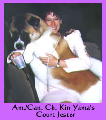 Am./Can. Ch. Kin Yama's Court Jester - Red and White Akita